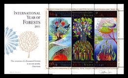 国連─森林と生命の連鎖