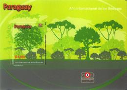 南米の国々─樹木で表現②