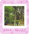 国土緑化・全国育樹祭
