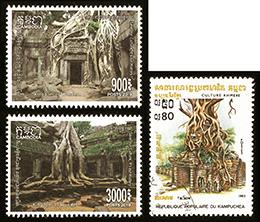 アンコール遺跡の樹木群