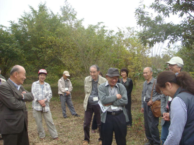 里山植林活動の現場