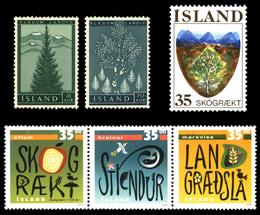 アイスランドの林業②