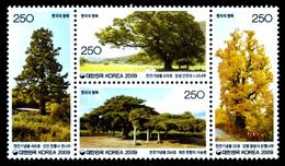 巨樹・老木―韓国
