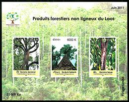 森の副産物