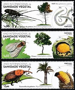 国際植物防疫年─ポルトガル